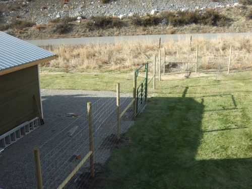 deer fence 10-27-09