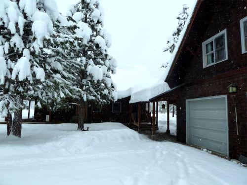 snow 1-9-13 a