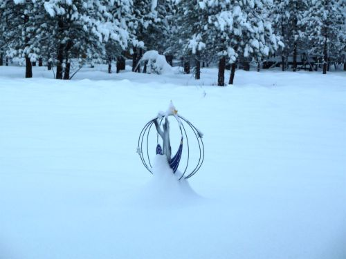 snow 1-9-13 c