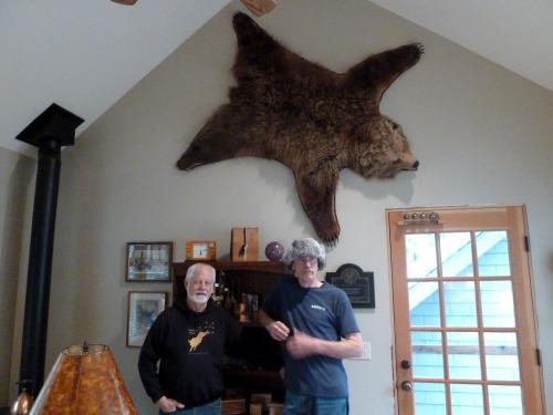 bear rug 2