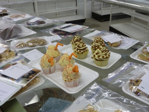 cupcakes, in the Junior Open division for baking