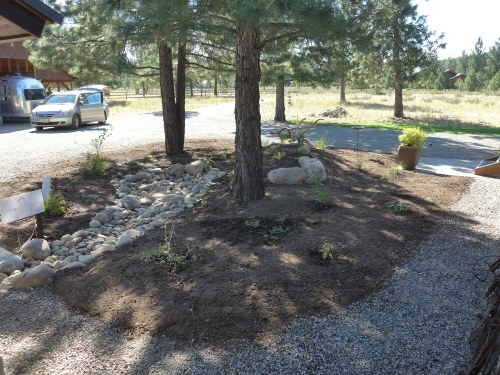 Front plantings with dry streambed