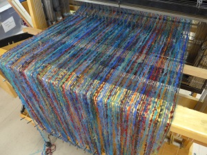 Blue Parrot warp on the loom