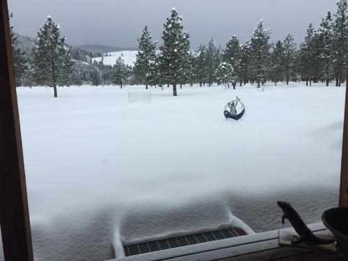 feb-9-snow